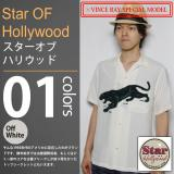 STAR OF HOLLYWOOD×VINCE RAY
