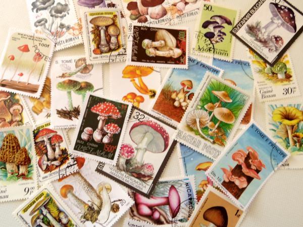 世界のきのこ切手