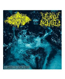 PIGTO / VAGINAL ANOMALIES<br>【 GROTESQUE ANOMALIES (輸入盤) 】