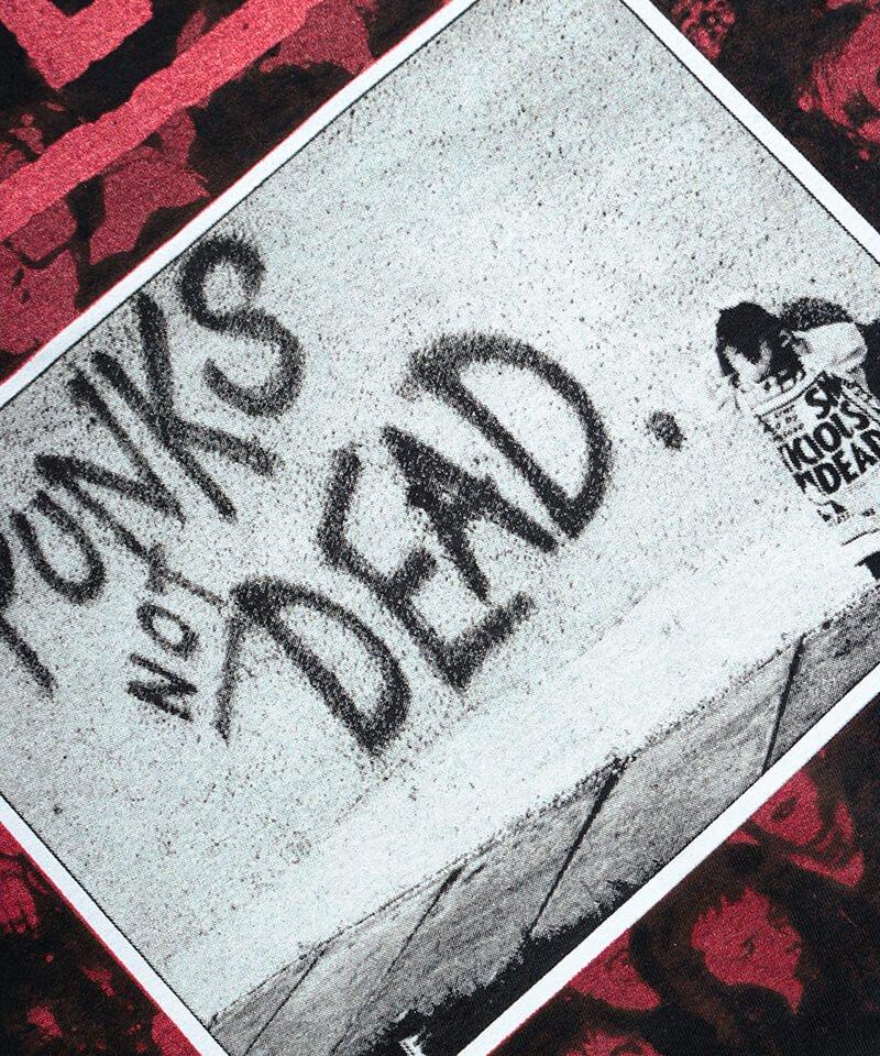 Official Artist Goods / バンドTなど |THE EXPLOITED / エクスプロイテッド:PUNKS NOT DEAD T-SHIRT (BLACK) 商品画像2