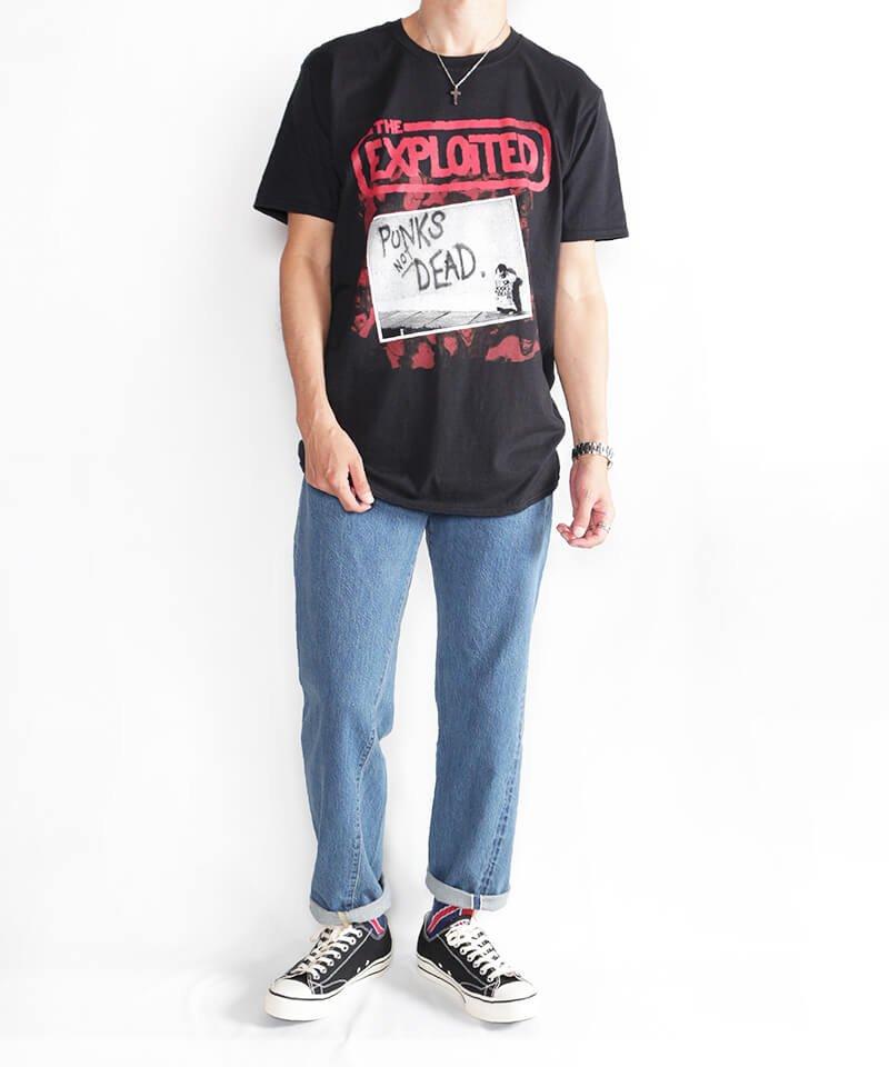 Official Artist Goods / バンドTなど |THE EXPLOITED / エクスプロイテッド:PUNKS NOT DEAD T-SHIRT (BLACK) 商品画像5