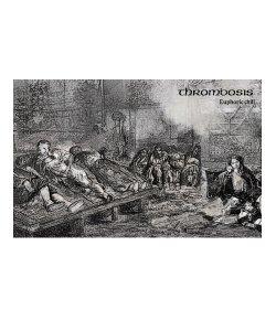 CD / DVD / THROMBOSIS / スロンボーシス:EUPHORIC CHILL (日本盤TAPE)