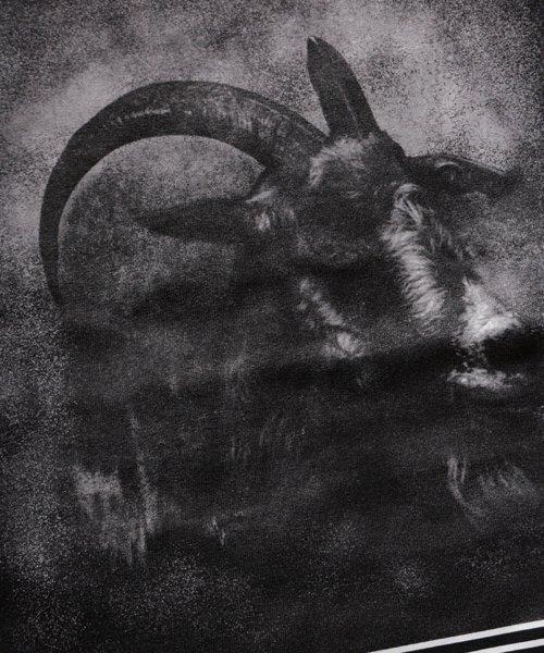 Official Artist Goods / バンドTなど  THROMBOSIS / スロンボーシス:DIVINE GOAT T-SHIRT (BLACK) 商品画像6