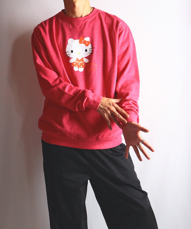 Official Artist Goods / バンドTなど  HELLO KITTY / ハローキティ:POLKA DOTS CREW NECK SWEATER (WASHED PINK) 商品画像8
