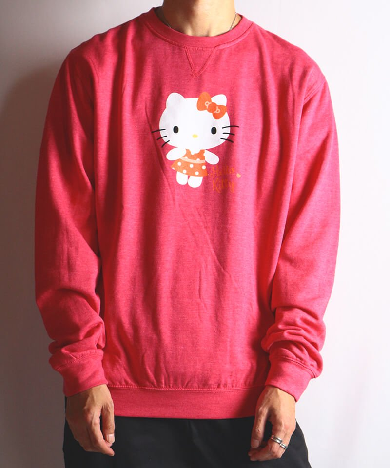 Official Artist Goods / バンドTなど  HELLO KITTY / ハローキティ:POLKA DOTS CREW NECK SWEATER (WASHED PINK) 商品画像9