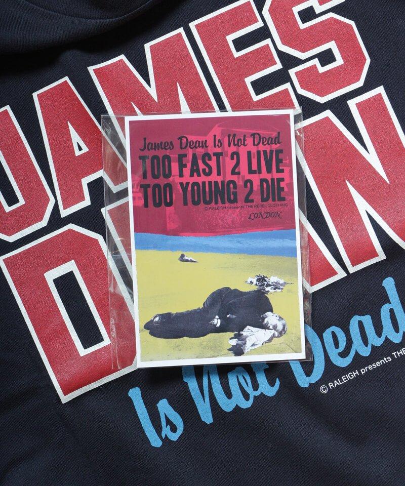 RALEIGH / ラリー(RED MOTEL / レッドモーテル) |JAMES DEAN IS NOT DEAD (邦題: このままじゃ終われない) MOVIE T-SHIRTS (BLACK)商品画像4