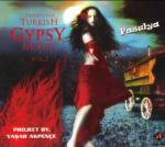 Traditional Turkish GYPSY MUSIC Vol.2