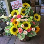 公演祝いや開店祝いに【季節のアレンジ】送料無料!!