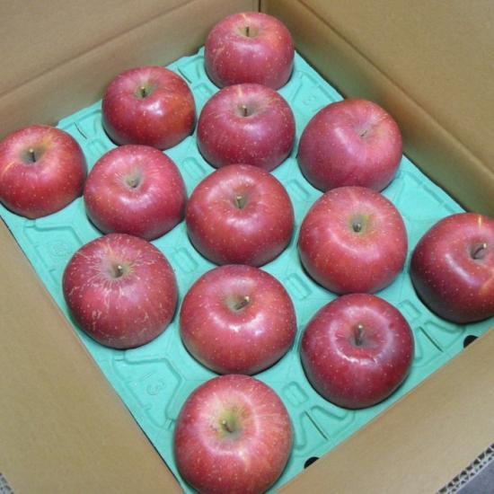 完熟りんご「ふじ」(家庭用10kg 24〜40玉位)
