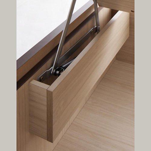 〈組立設置サービス付き〉日本製・安心の品質!ヘッドボードレス跳ね上げ式収納ベッド【RGL】(横開き) 【10】