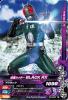 D3-040 仮面ライダーBLACK RX (R)