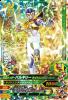 BS3-013 仮面ライダーバルキリー ライトニングホーネット (SR)