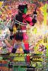 RM1-032 仮面ライダーディケイド (LR)