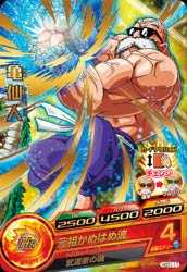 GDM(R)HGD1-11亀仙人
