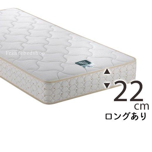 ZT-030 (セミシングル)