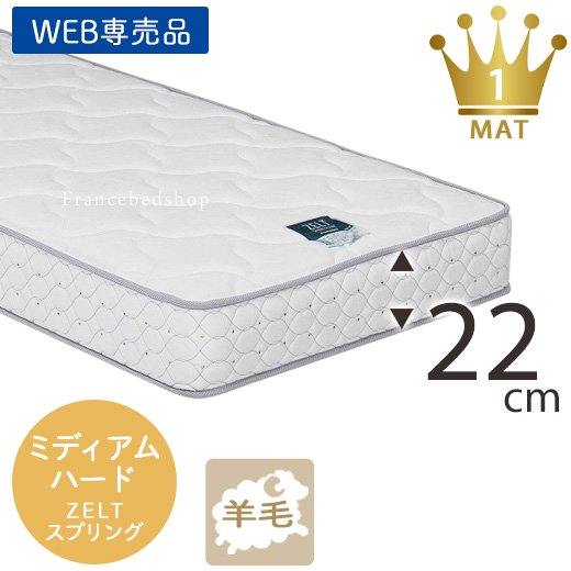 ZT-W055(シングル)