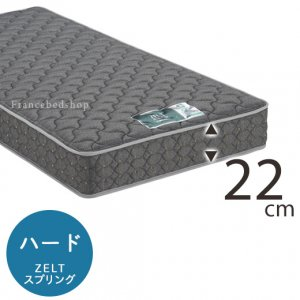 ZT-100(Yサイズ)