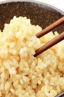 自然耕のコメ(純) こしひかりの玄米 1kg (お試しサイズ)