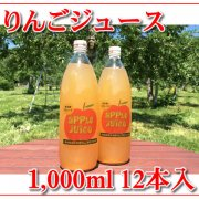 無添加!果汁100%!りんごジュース 1,000ml 12本入(6本入×2箱)
