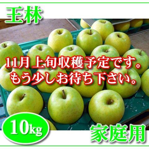 秋田りんご『王林』家庭用 10kg