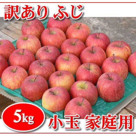 【在庫限り!】訳あり!秋田りんご『ふじ小玉』家庭用 5kg