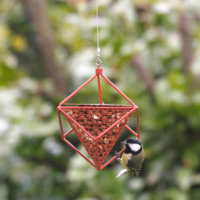 Peanut Feeder Cube RED