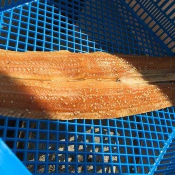 太刀魚の干物 本みりん干し(約250g)