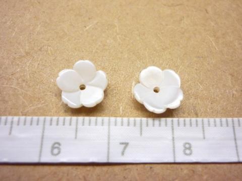 シェル 小花 2個セット2