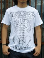 TUGBOAT GARMENTS - ANATOMY TEE (WHITE)