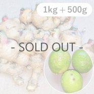 【送料無料】優樹の里 無農薬 新生姜1kgとレモン(家庭用)500gセット