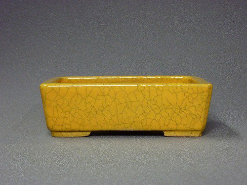 A6鴻陽5.5号黄釉隅入長方鉢