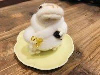 羊毛オブジェ 白アマガエル