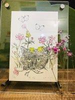 【ガリ版画】秋桜