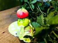 ミニトマトとカエル オブジェ