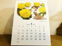 日本のカエルのカレンダー2021