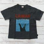 【Jeans-b 2nd】ジーンズベーセカンド アメカジ caiman ビック半袖Tシャツ チャコール (810104-CG)