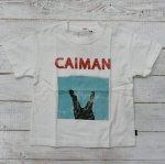 【Jeans-b 2nd】ジーンズベーセカンド アメカジ caiman ビック半袖Tシャツ オフシロ (810104-OW)