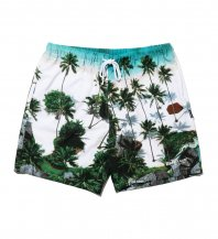 <font size=5>APPLEBUM</font><br>Palm Beach Board Shorts<br>Palm Tree<br><img class='new_mark_img2' src='https://img.shop-pro.jp/img/new/icons1.gif' style='border:none;display:inline;margin:0px;padding:0px;width:auto;' />