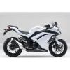 2013年モデル(EX250LDF) KMT.PEARL STARDUST WHITE