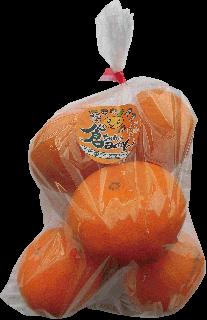古賀産「倉ちゃんみかん」1kg