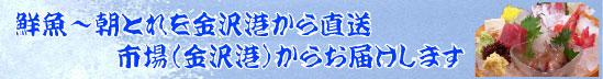 ズワイガニ・香箱ガニ・甘えび~金沢港・いきいき魚市・仲買人~鮮魚~朝とれ~直送