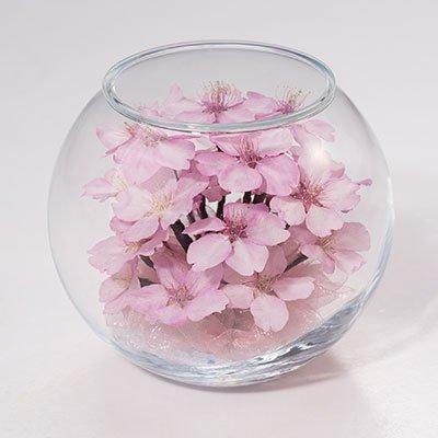 ボトルフラワー桜 ボールボトル(河津桜)