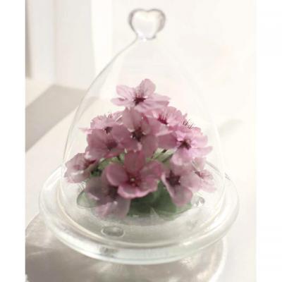 桜の花のボトルフラワーハートドーム型の容器に入った河津桜