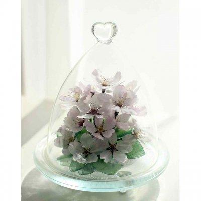 桜の花のボトルフラワーハートドーム型の容器に入ったソメイヨシノ
