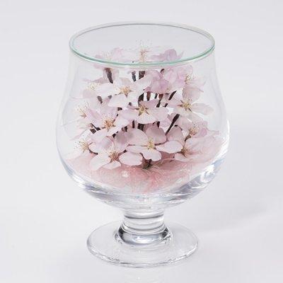 桜の花のボトルフラワー(グラスS)