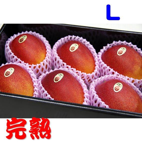 Lサイズ 完熟土佐マンゴー 6玉セット1玉 310g〜349g 家庭用