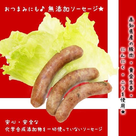 【無添加】 高知県産の豚肉と「黄金生姜・にんにく・ニラ」の無添加ウインナーソーセージ3本入り×10セット