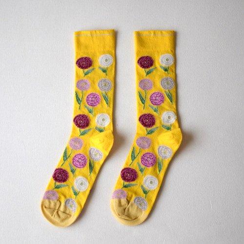 socks Mimosa Carnation