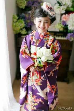 幸福鳩 紫 七五三 7歳