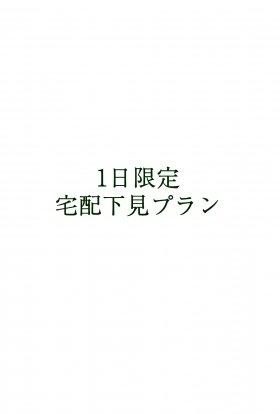宅配下見レンタル<1日>